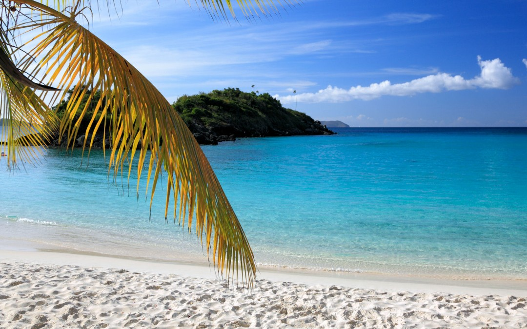 Caribbean Night – Thursday, June 25, 2015